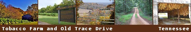 Tobacco Farm / Old Trace Drive - Natchez Trace