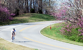 Biking the Natchez Trace Parkway