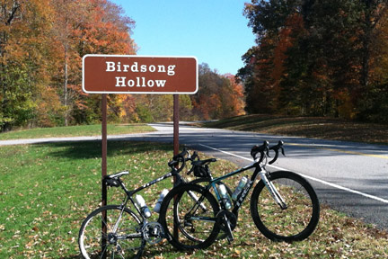 Birdsong Hollow - Natchez Trace Fall Foliage