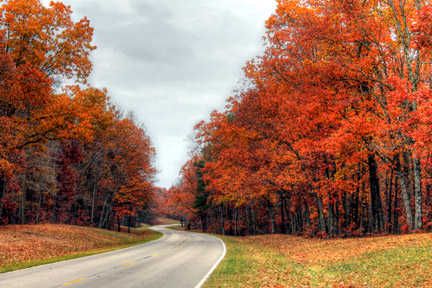 Milepost 375 - Natchez Trace Fall Foliage