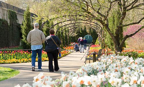 Cheekwood Estate Gardens Nashville Tennessee