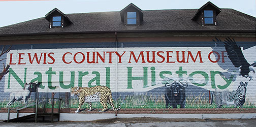 Lewis County Museum of Natural History - Hohenwald, Tennessee