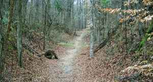 Grindstone Ford - Natchez Trace Parkway