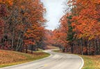 Fall Foliage Hohenwald - Summertown Tennessee