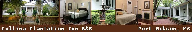 Collina Plantation Inn Bed and Breakfast - Port Gibson, Mississippi