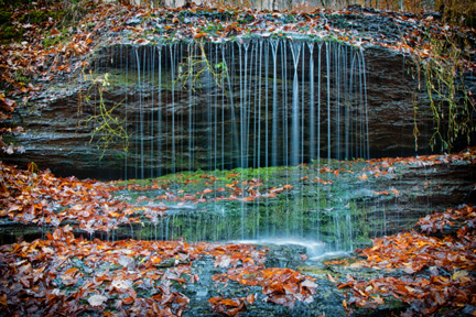 Fall Hollow - Natchez Trace Fall Foliage