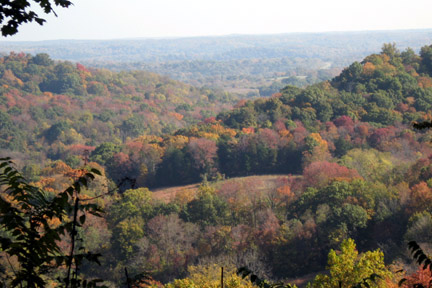 Jackson Fall Rest Area - Natchez Trace Fall Foliage Photo