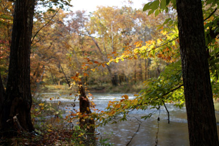 Metal Ford / Buffalo River - Natchez Trace Fall Foliage