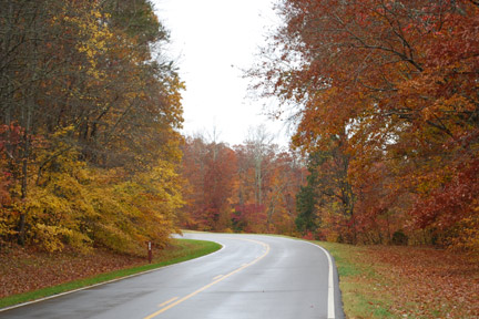 Curve near Collinwood, Tennessee - Natchez Trace Fall Foliage