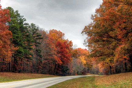 Milepost 373 - Natchez Trace Fall Foliage