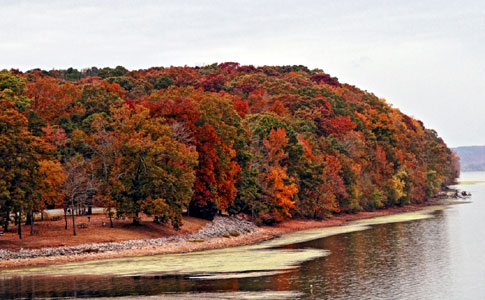 Tennessee River - Lauderdale Shore - Natchez Trace Fall Foliage