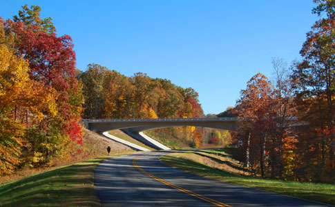 Highway 840 Overpass - Natchez Trace Fall Foliage