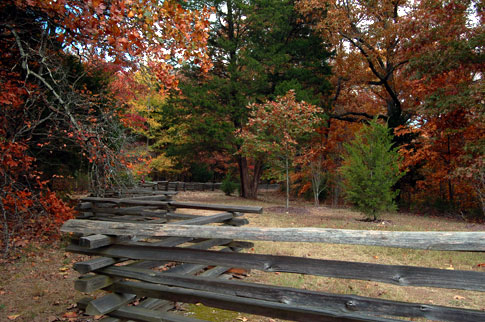 Meriwether Lewis / Old Trace - Natchez Trace Fall Foliage