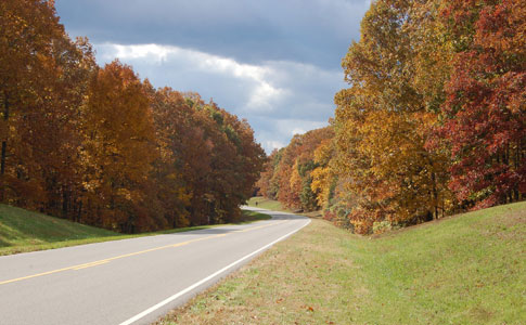 Milepost 405 - Natchez Trace Fall Foliage