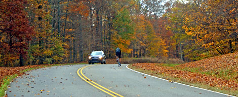 Milepost 438 - Natchez Trace Fall Foliage