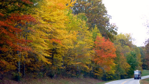 Milepost 439 / Birdsong Hollow - Natchez Trace Fall Foliage