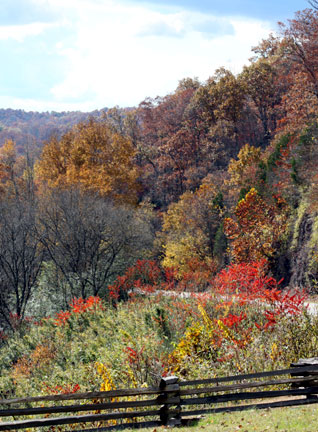 Swan Valley - Natchez Trace Fall Foliage
