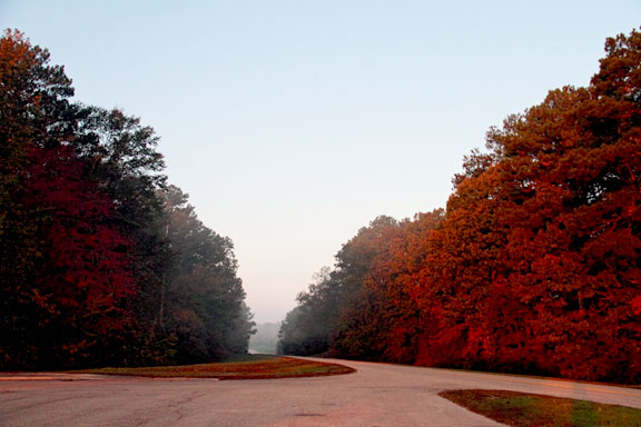 Milepost 287 - Mississippi Fall Foliage
