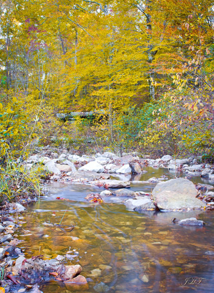 Rock Creek - Mississippi Fall Foliage