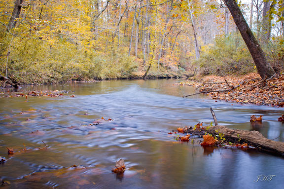 Chief Creek - Tennessee Fall Foliage