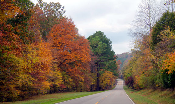 Milepost 379 - Tennessee Fall Foliage