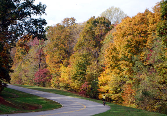 Milepost 438 - Tennessee Fall Foliage