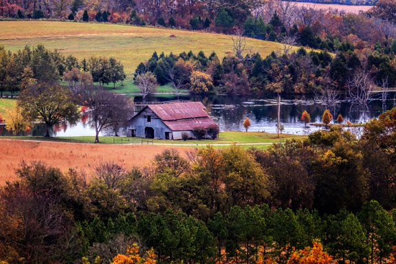 Water Valley Overlook - Tennessee Fall Foliage