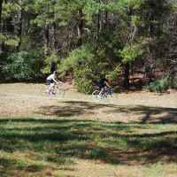Mississippi - Cyclists biking the Natchez Trace next to the Ross Barnett Reservoir.