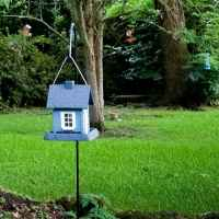 Bird Sanctuary - See and hear Cardinals, Blue Jays, Mockingbirds, Hawks, and Starlings.