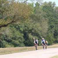 Cyclists biking on the parkway near milepost 349.