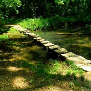 These stepping stones take you across Colbert Creek.