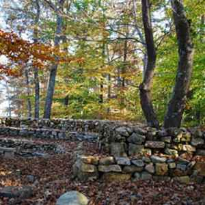 Fall colors blanket the wall.