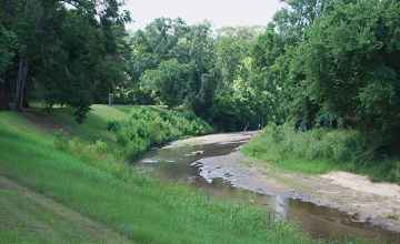 The picnic area is bordered by beautiful Coles Creek.