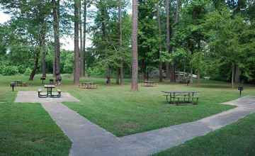 Some of the picnic tables at Coles Creek are handicap accessible.