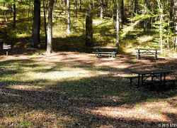 Picnic Area at Rocky Springs