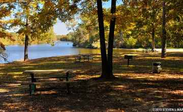 Picnic Area at River Bend