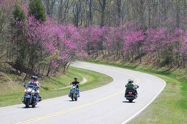 Motorcycle the Natchez Trace Parkway