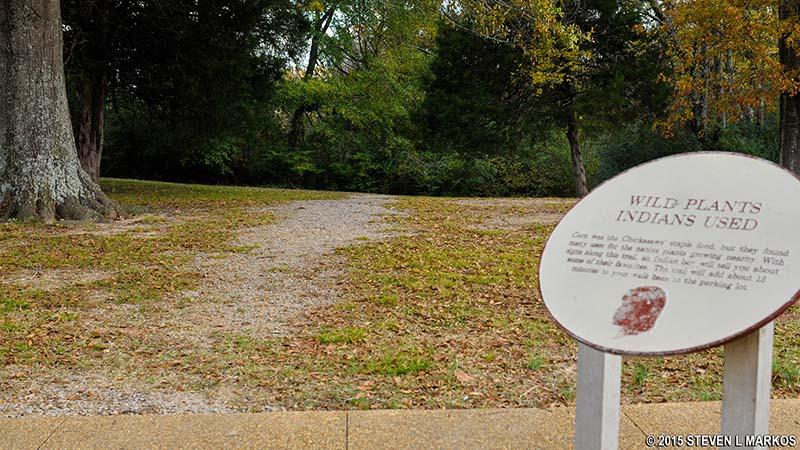 Chickasaw Village Site - Natchez Trace - NatchezTraceTravel com