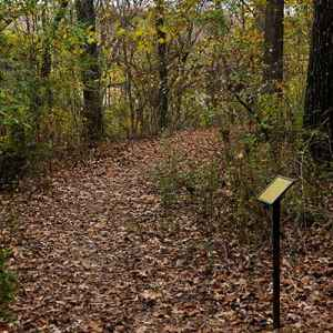 Chickasaw Village Nature Trail