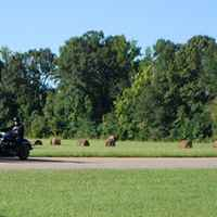 Motorcyles passing by the Bear Creek Mound site.