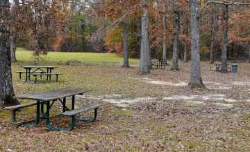 Picnic Area at Tennessee-Tombigbee Waterway - Natchez Trace Parkway