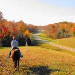 Horseback ride near milepost 418 on the Natchez Trace National Scenic Trail.