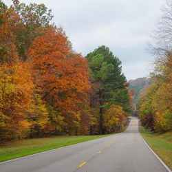 Fall scenery around milepost 379.