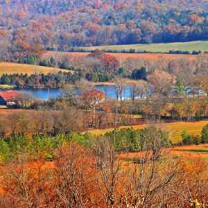 Columbia - Centerville area: Fall foliage at Water Valley Overlook.