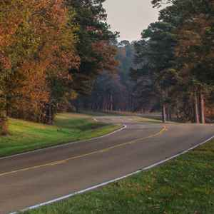 Canton - Ridgeland - Jackson area: Fall foliage on the parkway looking north at milepost 113.