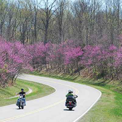 Tennessee - Motorcycles and Redbuds