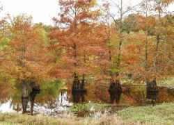 Mississippi - Tennessee-Tombigbee Waterway