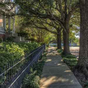 Stroll past antebellum homes. Natchez, Mississippi
