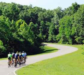Cycling the many curves of the Natchez Trace Parkway.