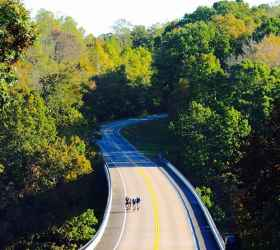 Cycling over one of the Natchez Trace bridges.